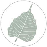 Dharma.org